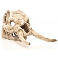 Skull - Wooly Mammoth (Penn-Plax)