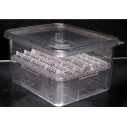S.I.M. Incubation Container (Squamata)