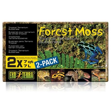 Forest Moss - Brick 7 qt (Exo Terra)