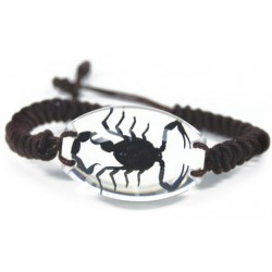 Bracelet - Black Scorpion (Clear)