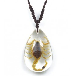 Necklace - Yellow Scorpion (Clear)