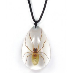 Necklace - Brown Recluse Spider (Clear)