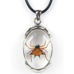 Necklace - Spiny Spider (Clear)