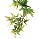 Jungle Plant - Croton - SM (Exo Terra)