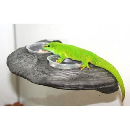 Gecko Ledge - Granite (Pet-Tekk)