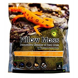 Pillow Moss - 4 qt (Galapagos)