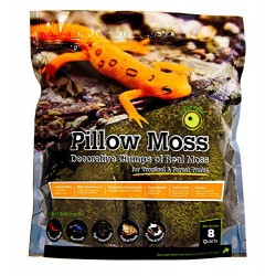 Pillow Moss - 8 qt (Galapagos)