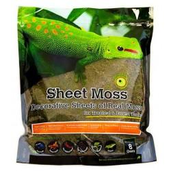 Sheet Moss - 8 qt (Galapagos)