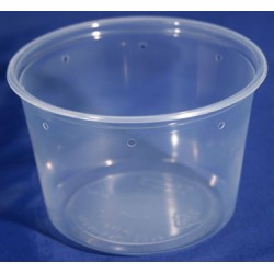 16 oz Semi-Clear Deli Cups - Punched - 100ct (Pro-Kal)