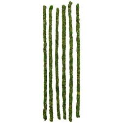 "Mossy Sticks - 24"" - 6pk (Galapagos)"