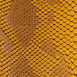 Faux Leather Snakeskin - Gold (RSC)