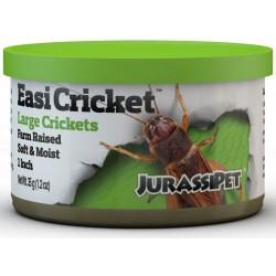 EasiCricket - Large (JurassiPet)