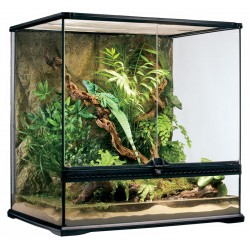Natural Terrarium - Medium/Tall (Exo Terra)