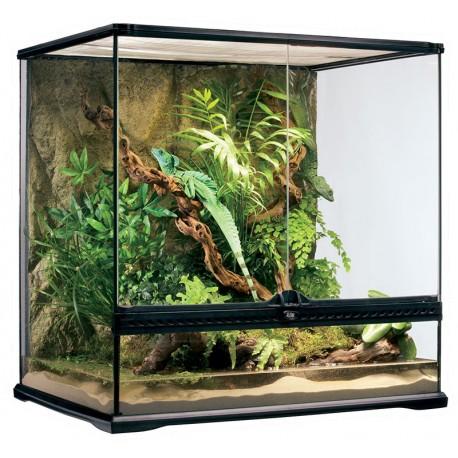 Natural Terrarium - Medium/Tall (Exo Terra)