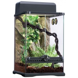 Rainforest Habitat Kit - SM (Exo Terra)