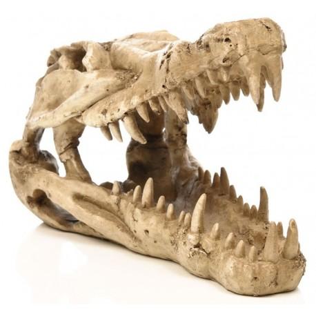 Skull - Crocodile (Penn-Plax)