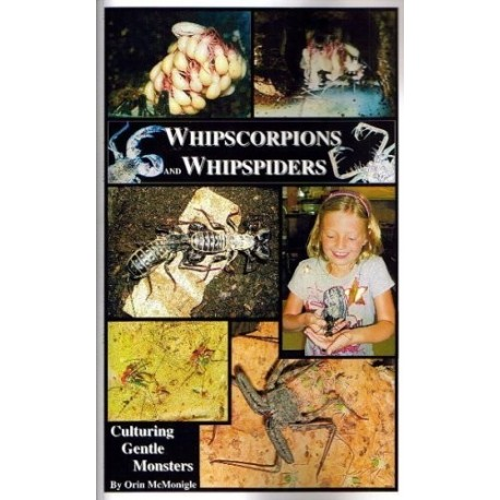 Whipscorpions and Whipspiders (Book)