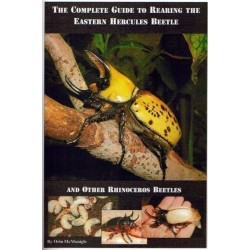 The Complete Guide to Rearing the Eastern Hercules Beetle (Book)