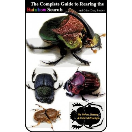 Complete Guide to Rearing the Rainbow Scarab and Other Dung Beetles (Book)