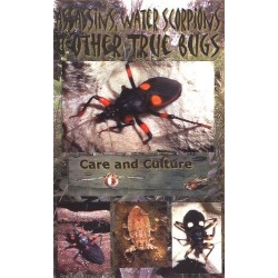 Assassins, Water Scorpions & other True Bugs (Book)