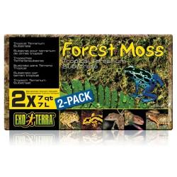 Forest Moss - Brick (Exo Terra)