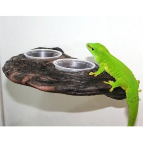 Gecko Ledge - Earth (Pet-Tekk)