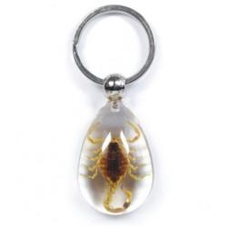 Keychain - Yellow Scorpion