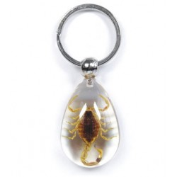 Keychain - Yellow Scorpion (Clear)