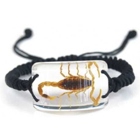 Bracelet - Yellow Scorpion (Clear)