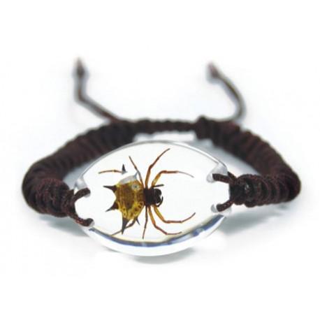 Bracelet - Spiny Spider (Clear)