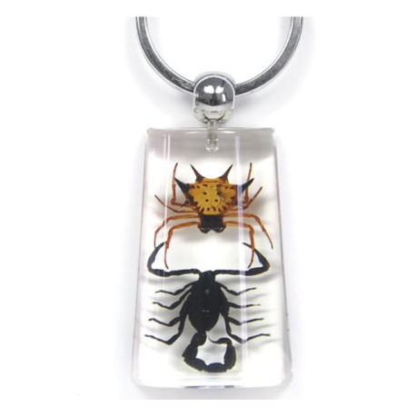 Keychain - Scorpion vs. Spider (Clear)
