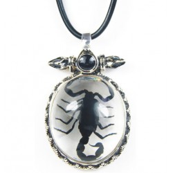 Necklace - Black Scorpion (Clear)