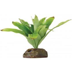 Bromelia (Exo Terra)