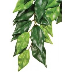 Jungle Plant - Ficus - LG (Exo Terra)