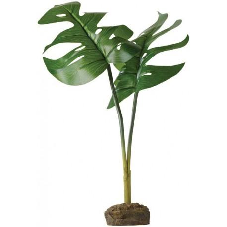 Philodendron (Exo Terra)