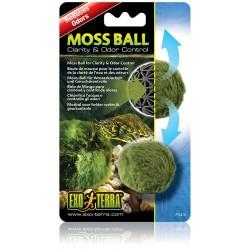 Moss Ball (Exo Terra)