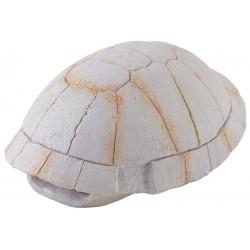 Tortoise Skeleton (Exo Terra)