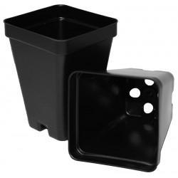 """Black Square Plant Pots - 2.5"""""""