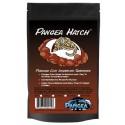 Pangea Hatch (16 oz)