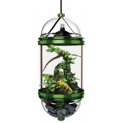 Chameleon Cantina (BioBubble)