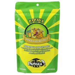 Pangea Fruit Mix - Banana & Papaya (64 oz)