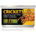 Crickets XL (Exo Terra)
