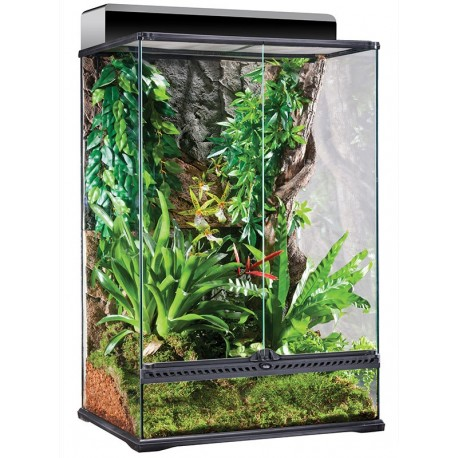 Natural Terrarium - Medium/X-Tall (Exo Terra)