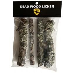 Biodegradables - Dead Wood Lichen (Lugarti)