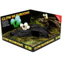 Glow Mushrooms (Exo Terra)